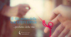 Read more about the article Il filo rosso della gratitudine…profumo della vita